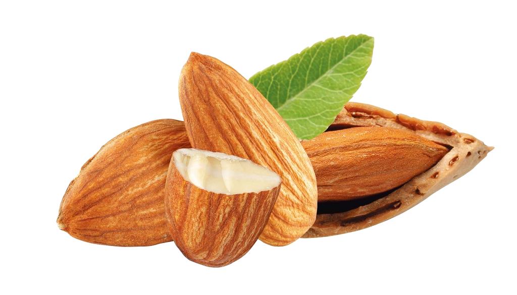 frutos secos online