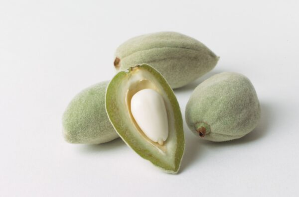 almonds, hulls, nut